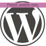 You can update your WordPress website yourself