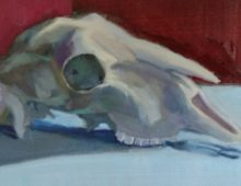 Goat Skull Color Study  and a New Discovery